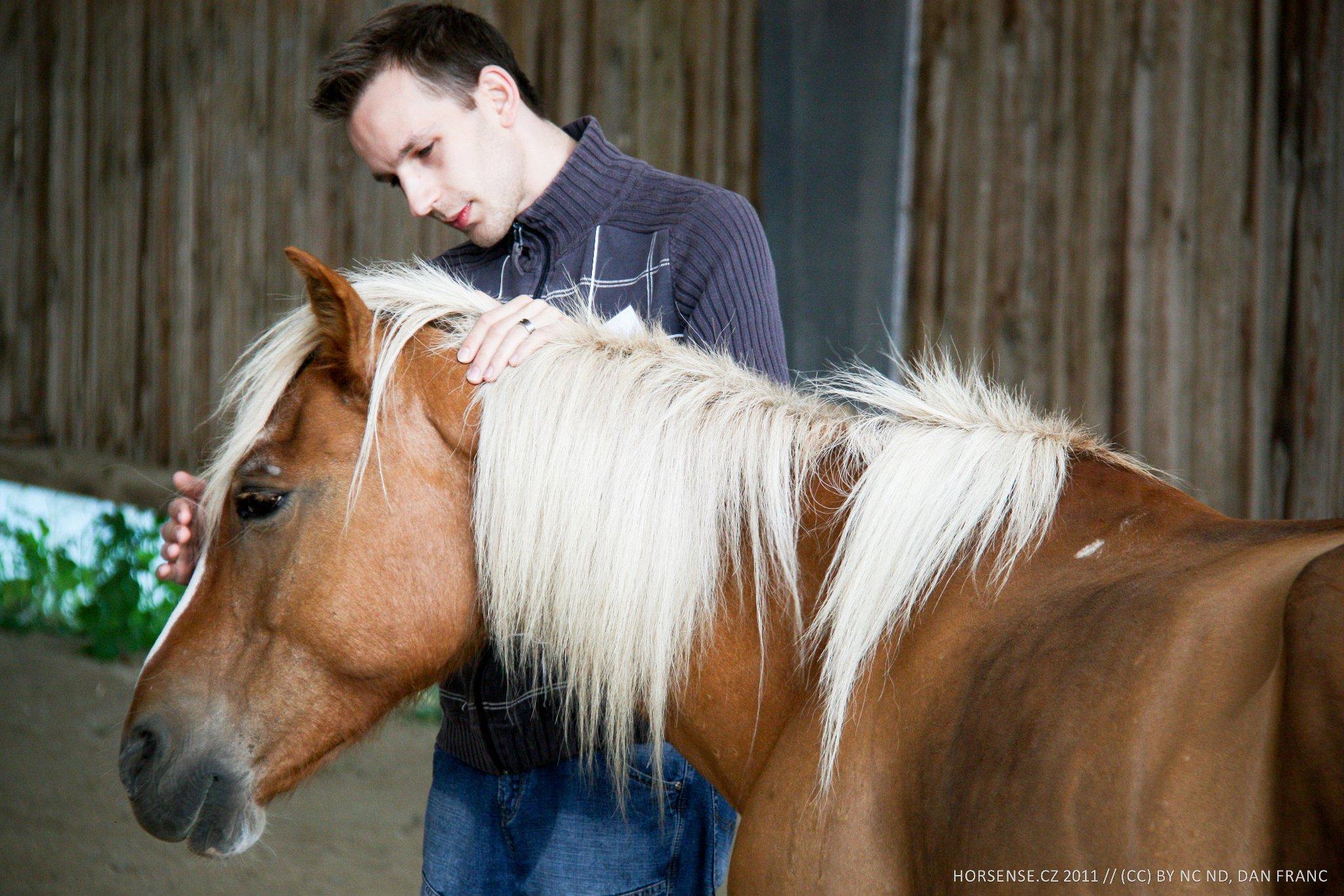 Koně nejsou jen čtyřnohá motorka - nabízí mnohem víc