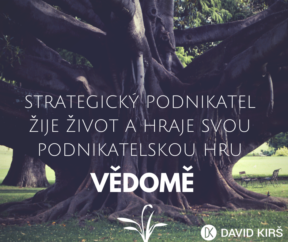 1_StrategickyPodnikatel_Vedomi_DavidKirs3